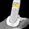Alcatel C250 and C250 Voice - Vignette 3