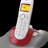 Alcatel C250 and C250 Voice - Vignette 5